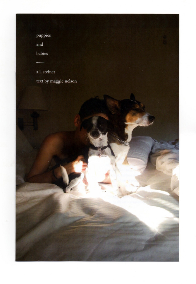 essays on puppie